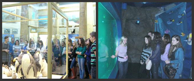 и океанариум в Санкт-